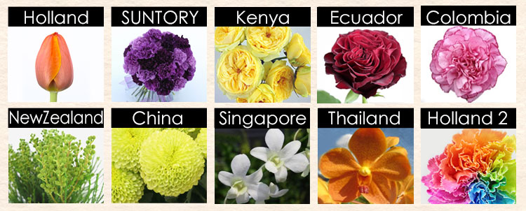花の産地とその花